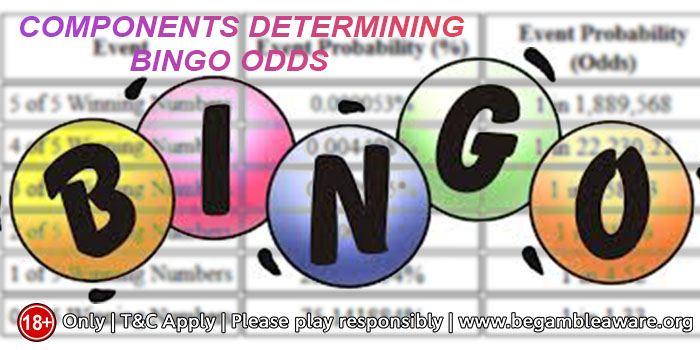 Bingo Odds
